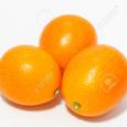 Kumquat Research